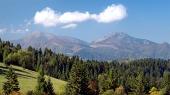 Bos en Mala Fatra boven Jasenova dorp