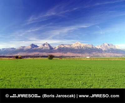 The High Tatra Mountains and green field
