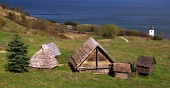 Rare wooden houses in ...