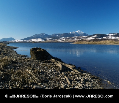 Jezioro i ogarek zimą