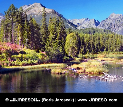 Szczyrbskie Pleso w Wysokich Tatrach na lato