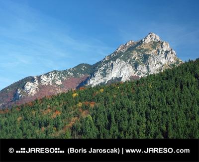 Velky Rozsutec, rezerwat przyrody, Słowacja