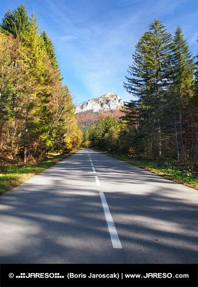 Droga do Velky Rozsutec, na Słowacji