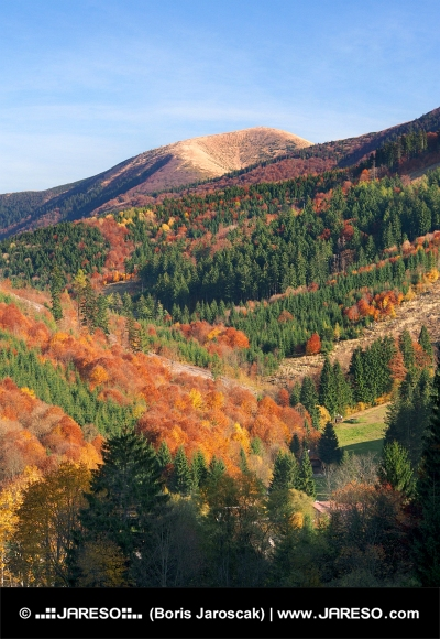 Park Narodowy Mała Fatra jesienią