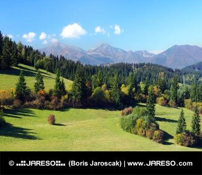 Mala Fatra și păduri deasupra satului Jasenova