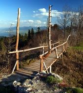 Pod din lemn