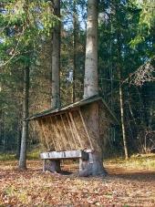 Feeder animal în pădure slovacă