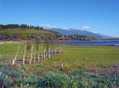 Деревянный пирс в сухом берегу на озере Липтовска Мара