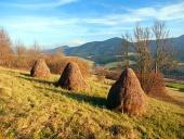 Осенний луг со стогами сена