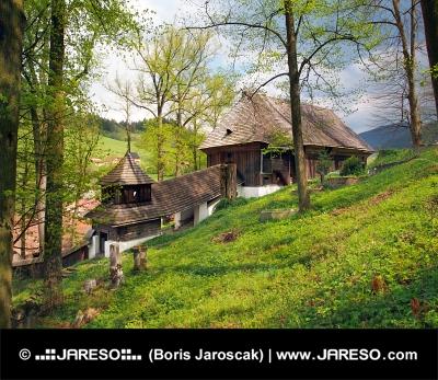 Trä UNESCO kyrka i Leštiny, Slovakien