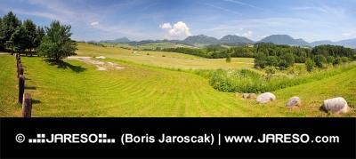 En panorama av Bobrovnik, Liptov, Slovakien