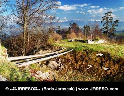 Arkeologiskt bevarade ruinerna av slottet Liptov, Slovakien