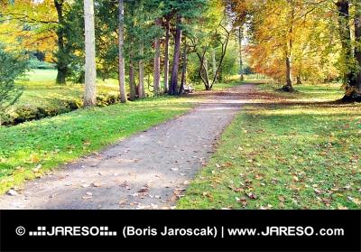 Hösten syn på färgglada park i Turcianska Stiavnicka, Slovakien