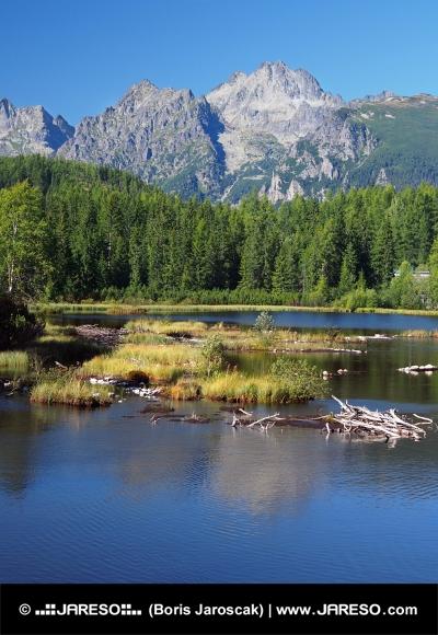 Strbske Pleso i slovakiska Tatras på sommaren