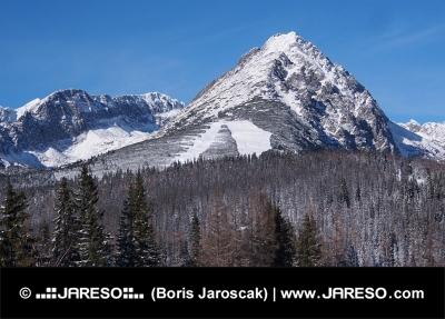 Vinter fält och toppar av Rohace berg