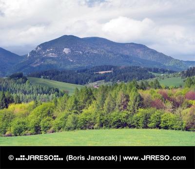 Landsbygden med Lomy kulle nära Bobrovník