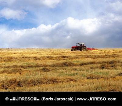 Traktor på det gula fältet