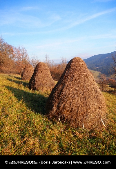 Tre höstackar beredd på äng