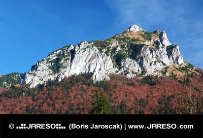 Hösten beskådar av Velky Rozsutec, Slovakien