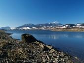 Lake och stubbe under vintern