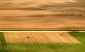 Flygfoto över fält i sommar