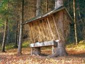 Feeder förberedd för djur i slovakiska skogen