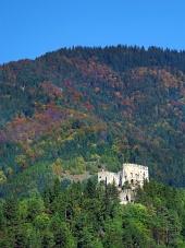 Ruševine gradu Likava v gozdu