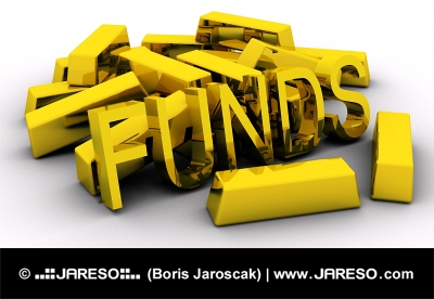 Gold bars and golden FUNDS text