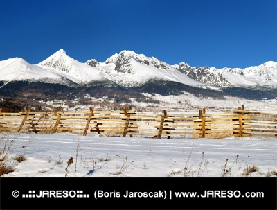 The High Tatra Mountains and field in winter