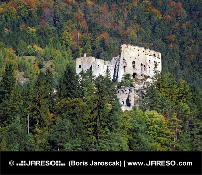 Forest and Likava Castle ruin in Slovakia