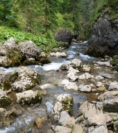 Mountain stream in Kvacianska Valley, Slovakia