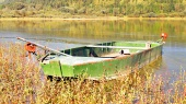 Green fishing boat in the reeds